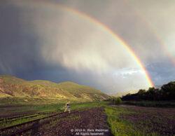 H. Mark Weidman Photography